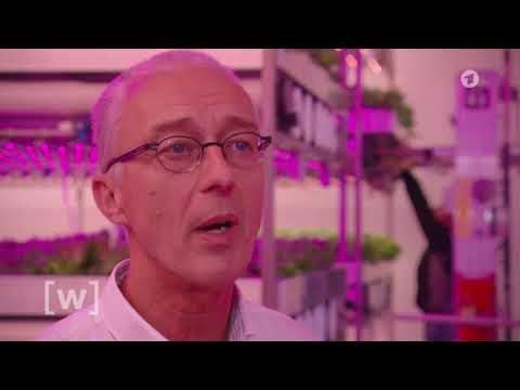 Indoor Farming – Planet Wissen