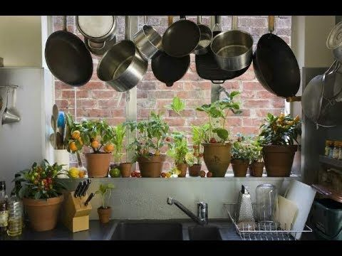 Kitchen gardening benefits.