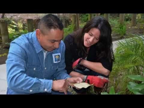 We Are UC Marin Master Gardeners