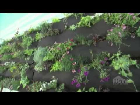 HGTV Dear Genevieve – Yellow Wagon Landscaping Living Wall