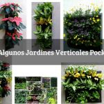 Jardines Verticales Pocket's
