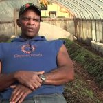 Growing Power – A Model for Urban Agriculture