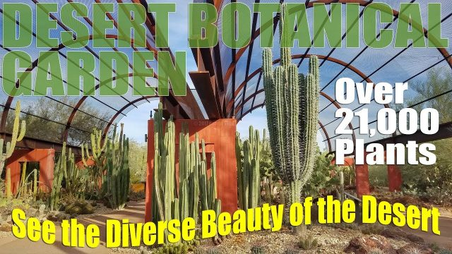 Desert Botanical Garden | Phoenix Arizona RV Travel Destination