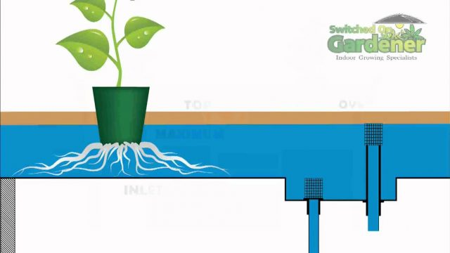 Hydroponic – Flood & Drain Basic Rundown