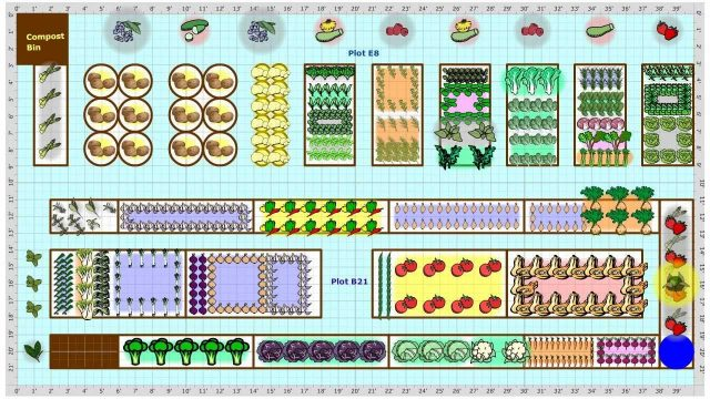 Garden Plans Gallery – find vegetable garden plans from gardeners near you.