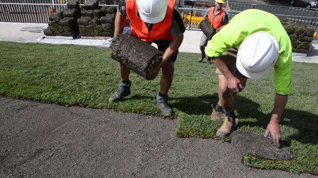 Lawn installed on roof of new museum