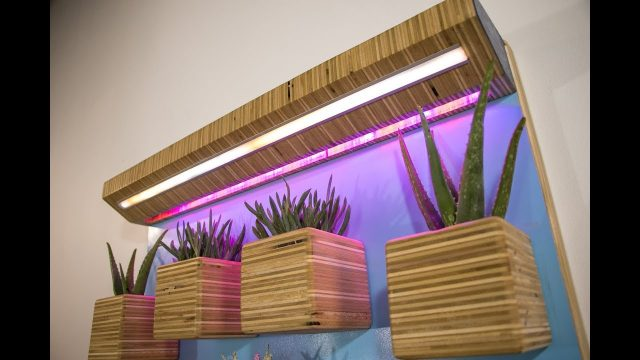 DIY Wall Garden | Plywood Planters & LED Grow Lights