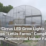 LetUs Farms   How Cirrus LED Grow Lights Helped This Commercial Indoor Farm 1