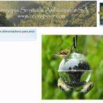Introducción a los Jardines Verticales y Jardinería Ecológica