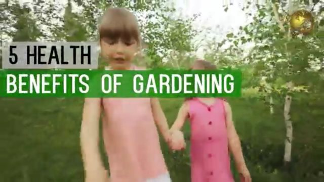 5 HEALTH BENEFITS OF GARDENING as a Hobby – Go Green Stay Healthy! Start Planting Now