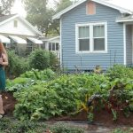 Orlando Couple Cited for Code Violation for Front Yard Vegetable Garden
