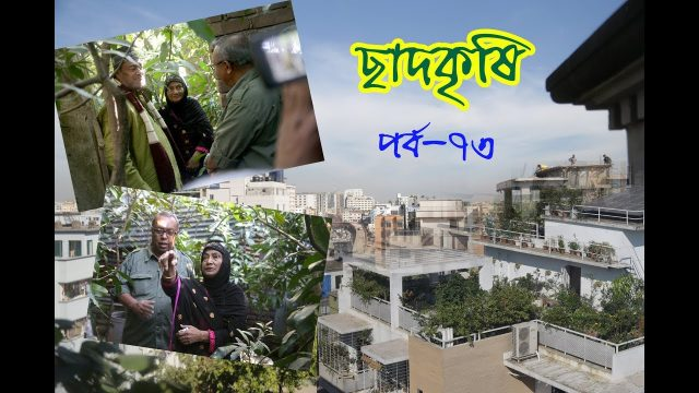 Rooftop farming || EPISODE 73 || HD || Shykh Seraj || Channel i || Roof Gardening || ছাদকৃষি ||