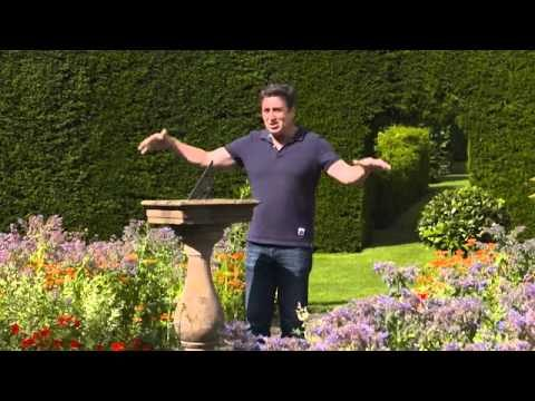 The Garden Gurus – Ireland Gardening – Wall garden