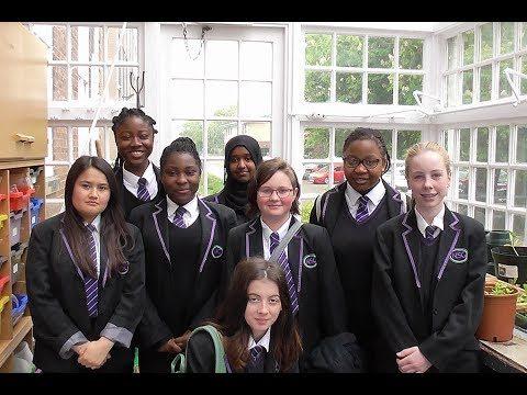 RHS School Gardening Team of the Year 2017 – Newland School for Girls (Finalist)