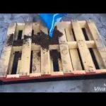 Cómo hacer un jardín vertical con palets de madera