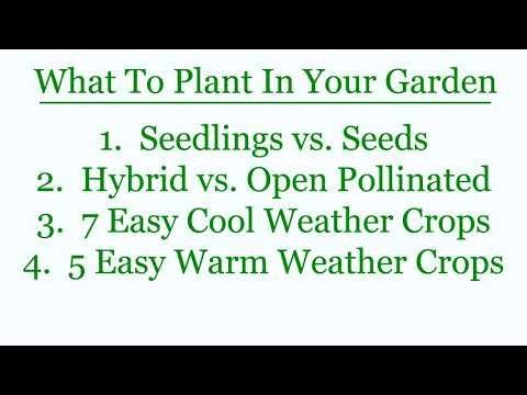 The Beginner's Guide to Vegetable Gardening : Course Outline