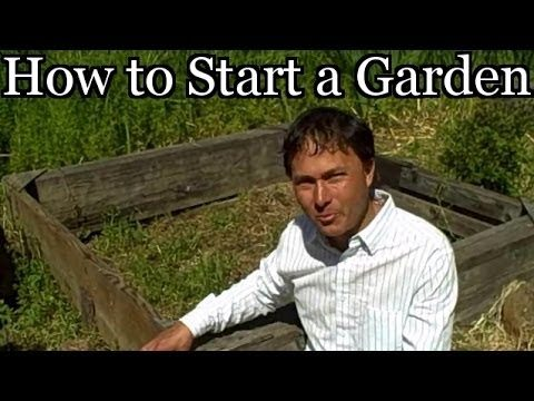 How to Start a Vegetable Garden at a New House – Planning