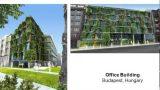 green walls2