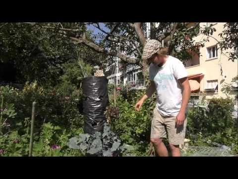 Hinterhof Garten – Vertikale Garten Idee