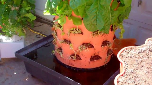 Aquaponic Garden Tower
