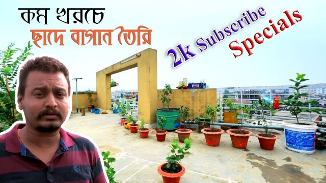 ছাদে বাগান তৈরি। ছাদ কৃষিঃ 2k Subscribe Specials-Roof Gardening