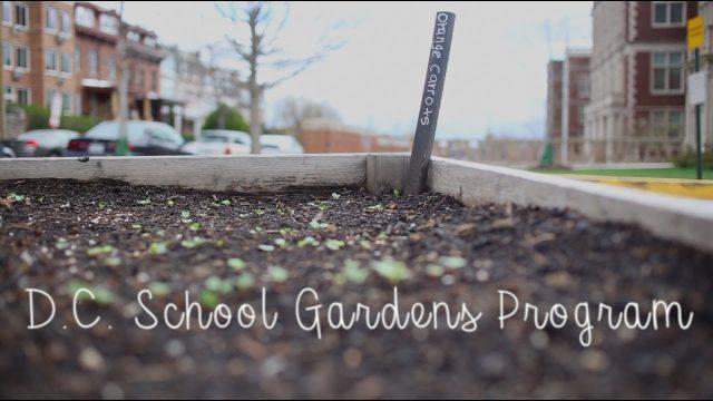 D.C. School Gardens Program