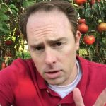 Why I Won't Grow Hydroponic Tomatoes Again