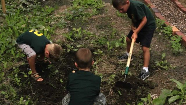 St. Sebastian Parish of Akron – School Garden Fundraiser