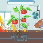 Safe Grow smart indoor gardening products