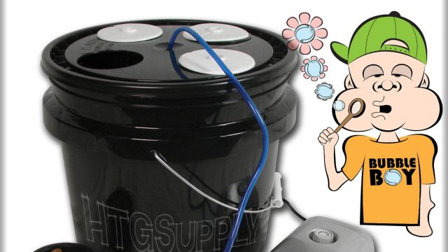 Bubble Boy Deep Water System – Grow Plants with Hydroponics! Simply and Easy!