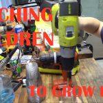 Mittleider Gardening System: Teaching Children to Grow Food