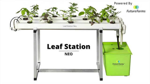 Unboxing – Leaf Station Neo (Hydroponic Home Kit) – Future Farms (India)