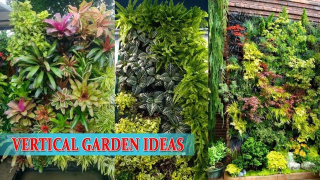 Wall Garden | Vertical Garden Ideas..