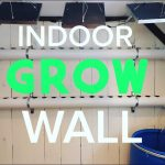 Build a Hydroponic Grow Wall Inside – Grow Plants Year Round and Save Money!