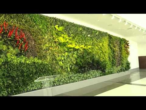Living Wall of Plants at Birmingham-Shuttlesworth Airport