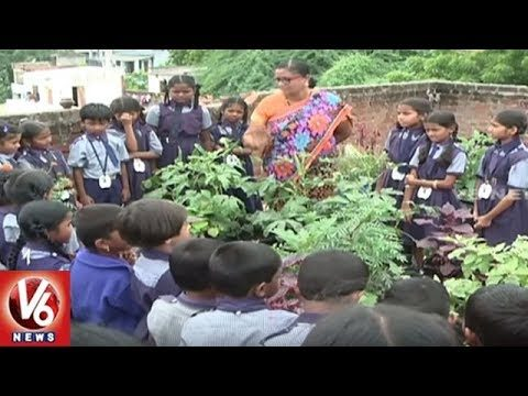 Nilina Techno School In Hyderabad Conducts Roof Gardening Awareness Program | V6 News