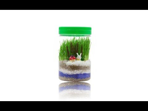 Planters' Choice Light-up Terrarium Kit for Kids