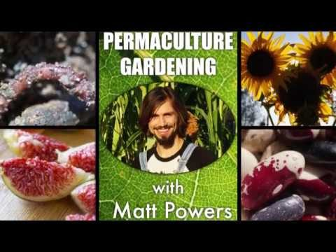 Permaculture Gardening with Matt Powers – Like a PDC for Gardening