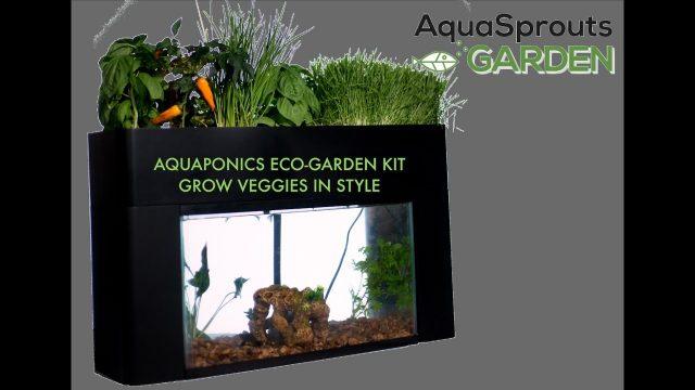 Aquaponics Eco-Garden Aqua Sprouts Plant Hydroponics & Fish Tank Kit