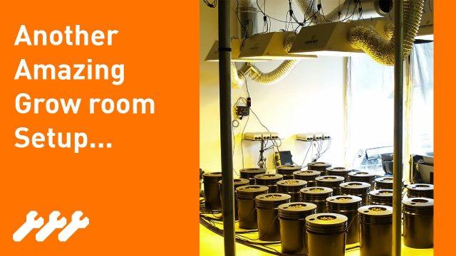 Megarooms! How to setup an amazing indoor Hydroponic grow room #22