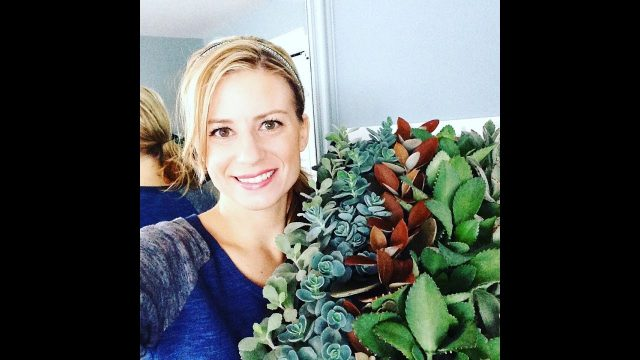 Succulents Living Wall Planter