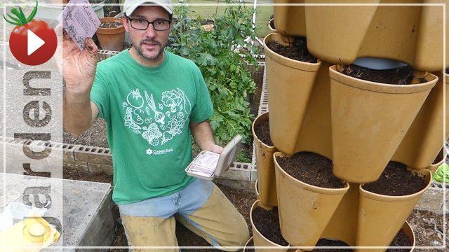 Gardening In Small Spaces – Greenstalk Vertical Vegetable Gardening! Strawberries, Carrots, Lettuce
