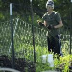 Organic Farm Documentary – Hydroponics Wholesale