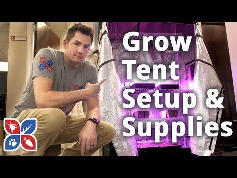 Grow Tent Setup and Supplies – Indoor Gardening Setup | DoMyOwn.com