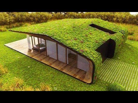 Green Wall designs ideas  ( Part 3 )