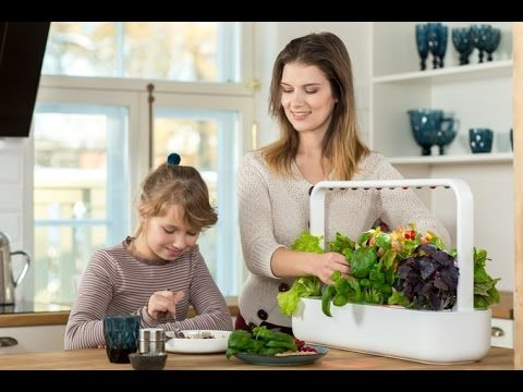 5 Modern Indoor Gardens, The Smart Way To Grow Fresh Herbs And Vegetables #1