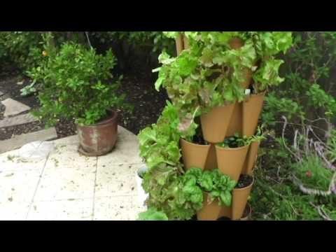 Garden Grow Tower just keeps producing healthy vegetables