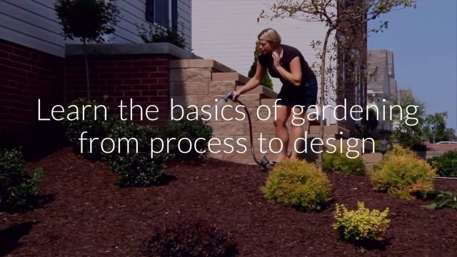 Gardening and Landscape Design Business Diploma Course