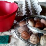 How to Clean Chicken Eggs. Sustainable organic food farming and homesteading.