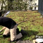 Concept and Construction of Project Smartroof 2.0 – a new Blue-Green Roof System